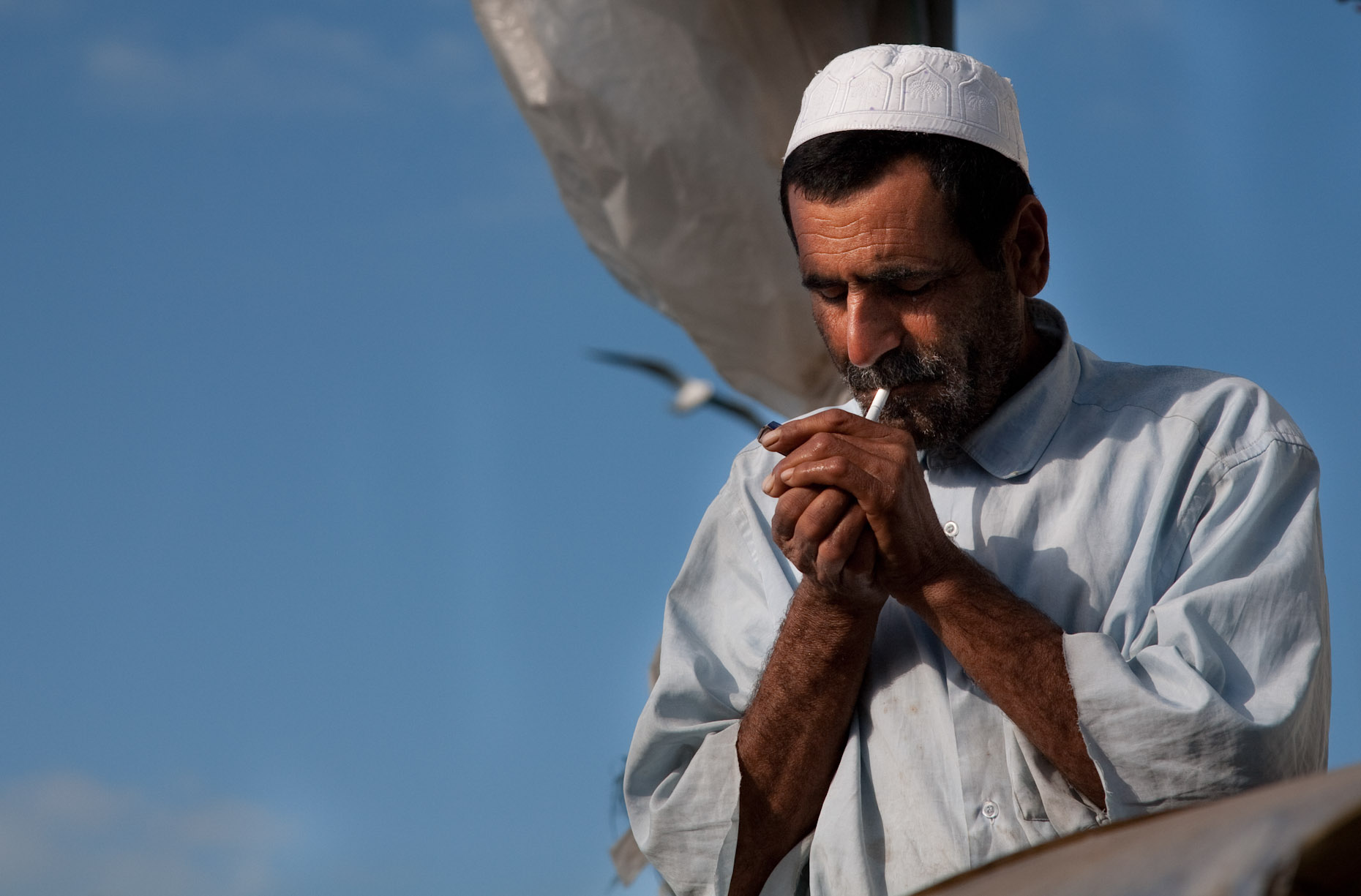 Oalzaabi (36 of 133).jpg